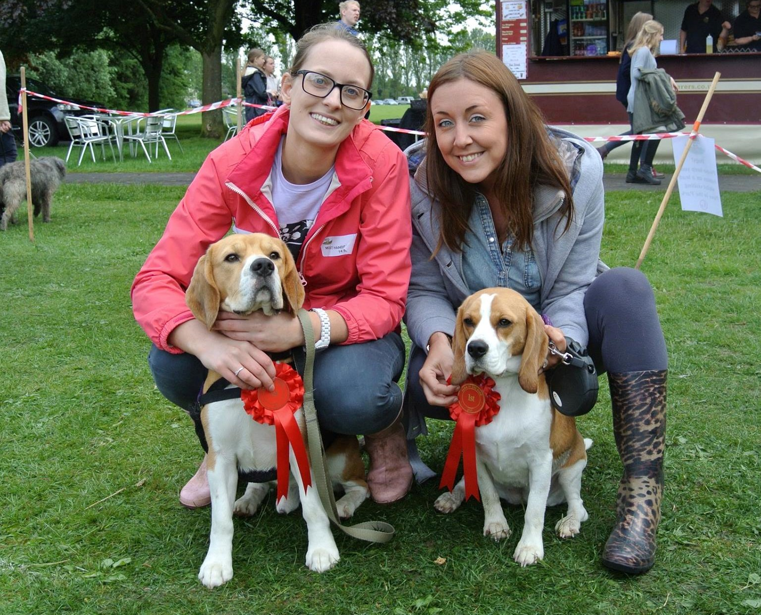 Dog Show at Leyland Festival